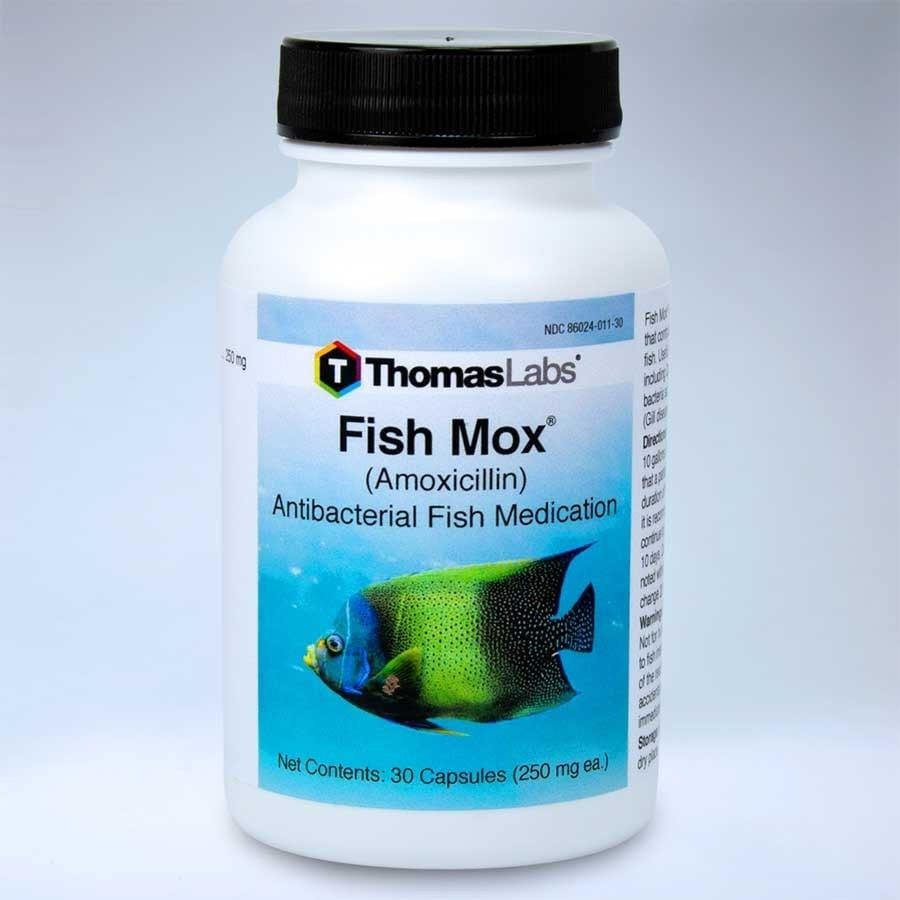 Fish Mox Amoxicillin Medication - Thomas Labs
