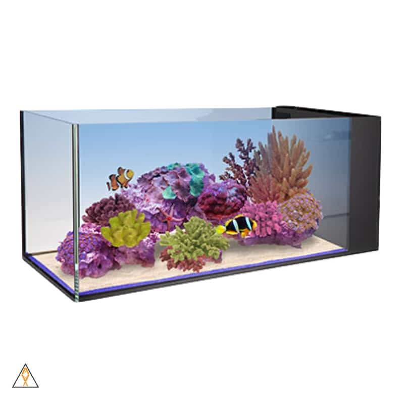 Rimless Concept Aquarium Nuvo Fusion Peninsula 20 - Innovative Marine