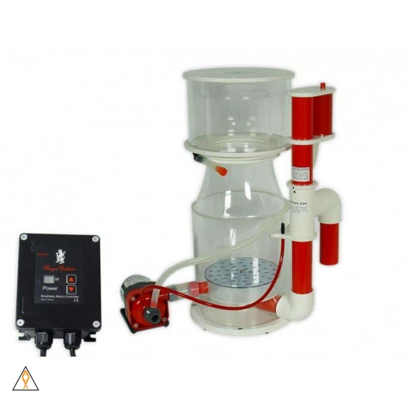 Bubble King 250 Internal Skimmer - Royal Exclusiv | Aqua Lab Aquaria