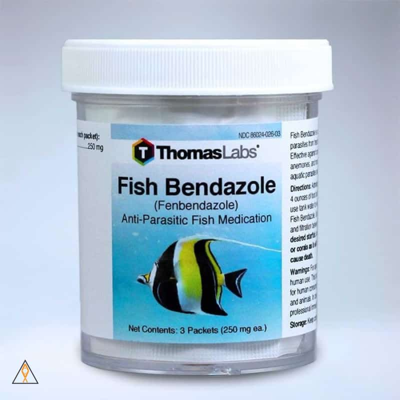 Fish Bendazole Fenbendazole Powder - Thomas Labs