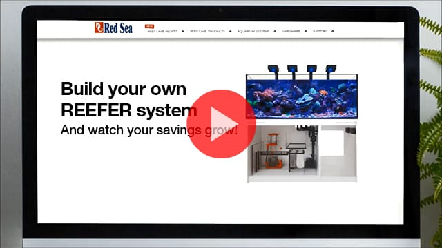 Red Sea MyReefer Wizard Launches with Special Aqua Lab Discount!