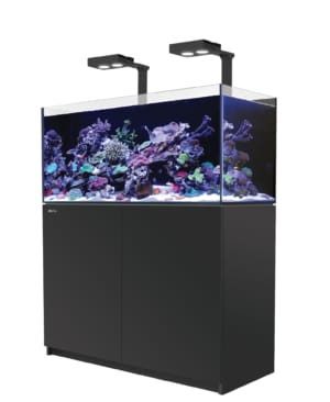 REEFER XL 525 Aquarium System (108 GAL) - Red Sea