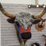 Billy Highland Bull
