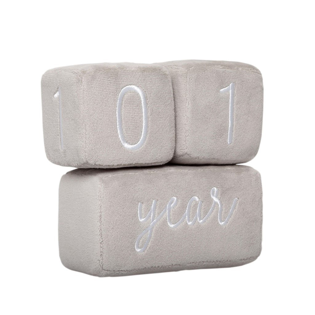 Pearhead Plush Baby Age Blocks