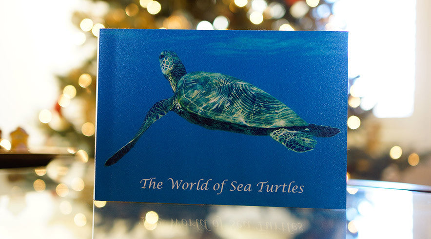 the world of sea turtles book image