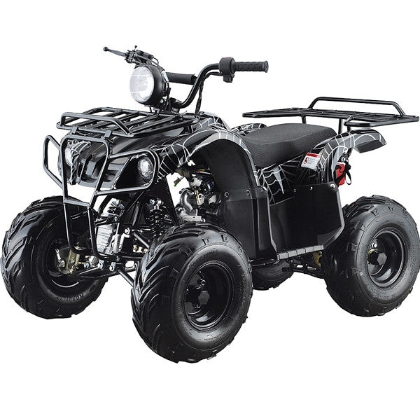 Taotao Ata-110d 4-wheeler All-terrain Vehicle Atv  110cc