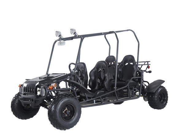 TaoTao 4Fun 4 Seater 200cc Fully Automatic Reverse Gas Go Kart Dune Buggy