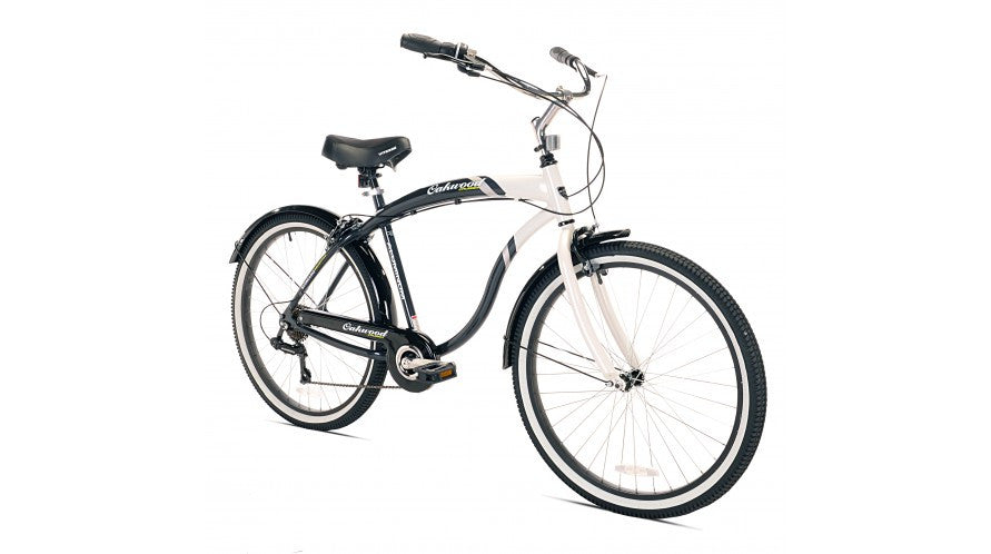 Electrical Quality Ladies Beach Bike
