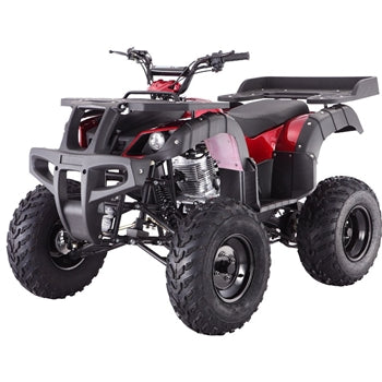 TaoTao Rhino 250 4-Wheeler Adult Size Gas All-Terrain Vehicle ATV