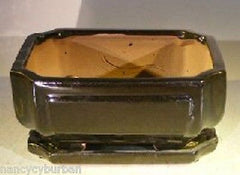 "Bonsai Pot Rectangle Black Bonsai Pot w/ Tray 8.5"" x  6.75 x 4"" prewired"