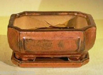 "Bonsai Pot Rectangle Aztec Orange w/ Tray 6.37"" x 4.75"" x 2.625"" pre-wired"