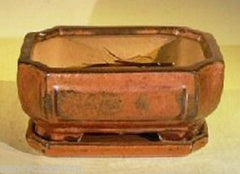 "Bonsai Pot Rectangle Aztec Orange w/ Tray Wired & Svreened<br>6.37"" x 4.75"" x 2.625"""