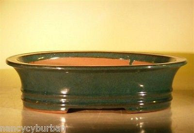 "Glazed Ceramic Bonsai Pot Oval Dr. Moss Green 14"" x 11.5"" x 4"""