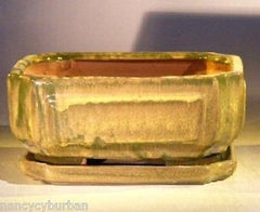 "Bonsai Pot Rectangle 2 Tone Moss/Beige Moss Green w/ Tray 8.5""x6.5""x3.5""prewired"