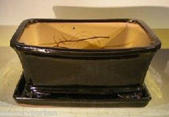 "Ceramic Bonsai Pot & Tray Rectangle with Clipped Corners Small Top Lip<br>Black 10 x 8 x 4.5"" Wired"