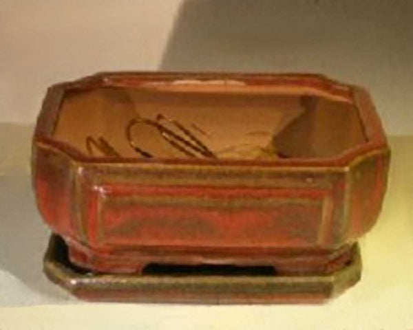 "Bonsai Pot Rectangle w/ Tray Parisian Red <br>6.37"" x 4.75"" x 2.625""<br>Screened & Wired"