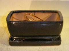 Ceramic Bonsai Pot Rectangular w/ Tray Screened & Wired Black 6.37 x 4.75 x 2.6