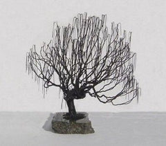 Bonsai Tree Wire Art Metal Sculpture Black Steel Weeping Willow Styled Tree