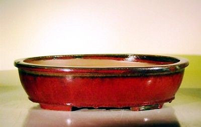 "Bonsai Pot Large Oval <br>Footed Ceramic Glazed<br> Parisian Red<br>16"" x 12 1/2"" x 4"""
