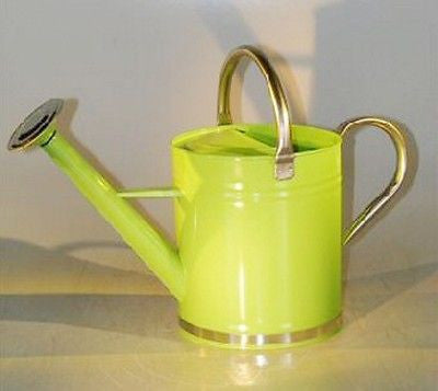"Watering Can Zinc Watering Can Pastel Green Color 9.5"" x 5.5"" 10"" Tall"