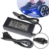 Replacement Universal Hoverboard Charger - ManSeeManWant
