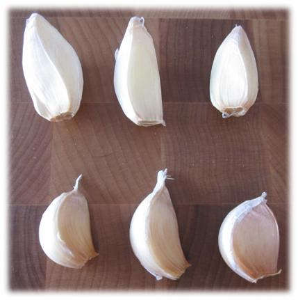 Different shaped garlic cloves