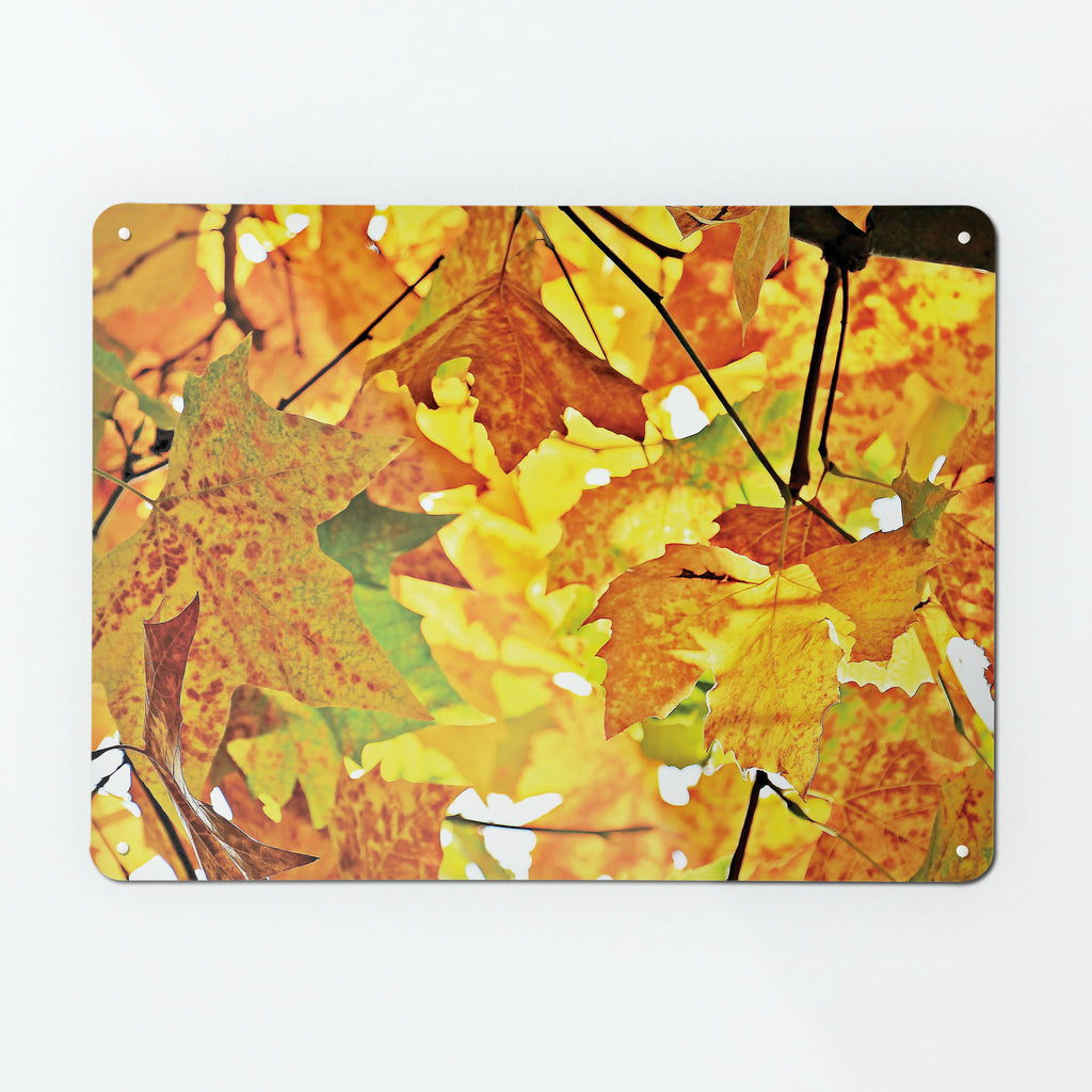 Autumn Tree Magnetic Notice Board
