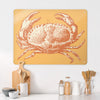 Crab Illustration Magnetic Board in a kitchen setting