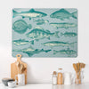 Fish Illustration Magnetic Board in a kitchen setting