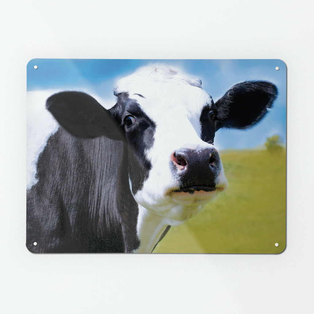 Friesian Cow Magnetic Notice Board
