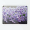 Lilac Flowers Magnetic Notice Board