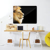 Lion Large Magnetic Board in aworkspace setting