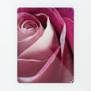 Pink Rose Magnetic Notice Board  Edit alt text