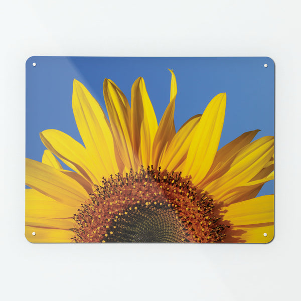 Sunflower Magnetic Notice Board