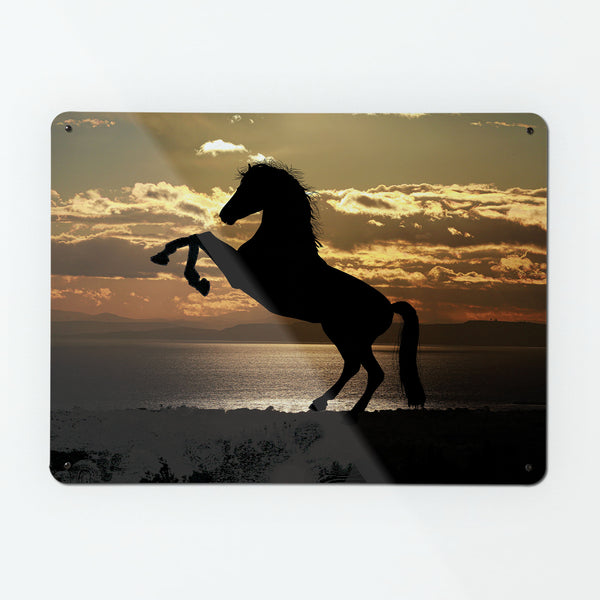 Sunset Horse Magnetic Notice Board