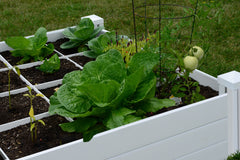 Raised garden with grow grid.