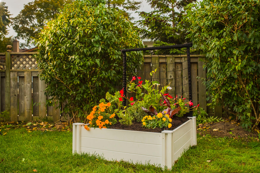 3 x 3 Garden Bed With Trellis