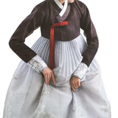 brown and gray illustrated hanbok