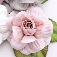 blush pink paper flowers