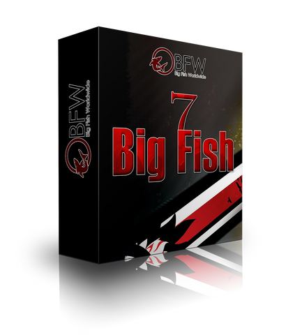 Big Fish Workparts Vol. 7