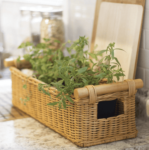 Long Narrow Pole Handle Wicker Basket in the color Toasted Oat containing cute green plants, sitting on a marble countertop.