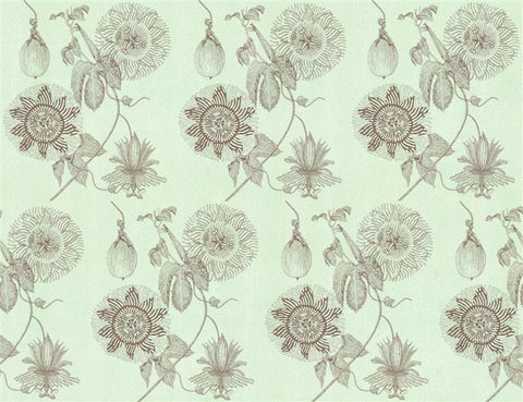 wallpaper mint passionfruit by Judith M Boyes