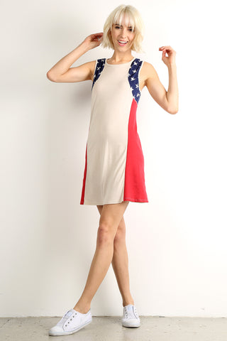 Stars and Stripes Forever Shift Dress-1