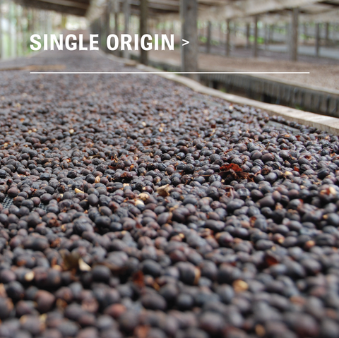 Panama - Finca Hartmann - Honey - Single Origin