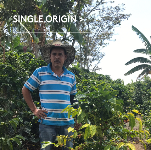 Colombia, Santa Fe De Antioquia, Single Origin