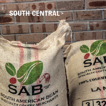 South Central Organic Blend - Black Friday