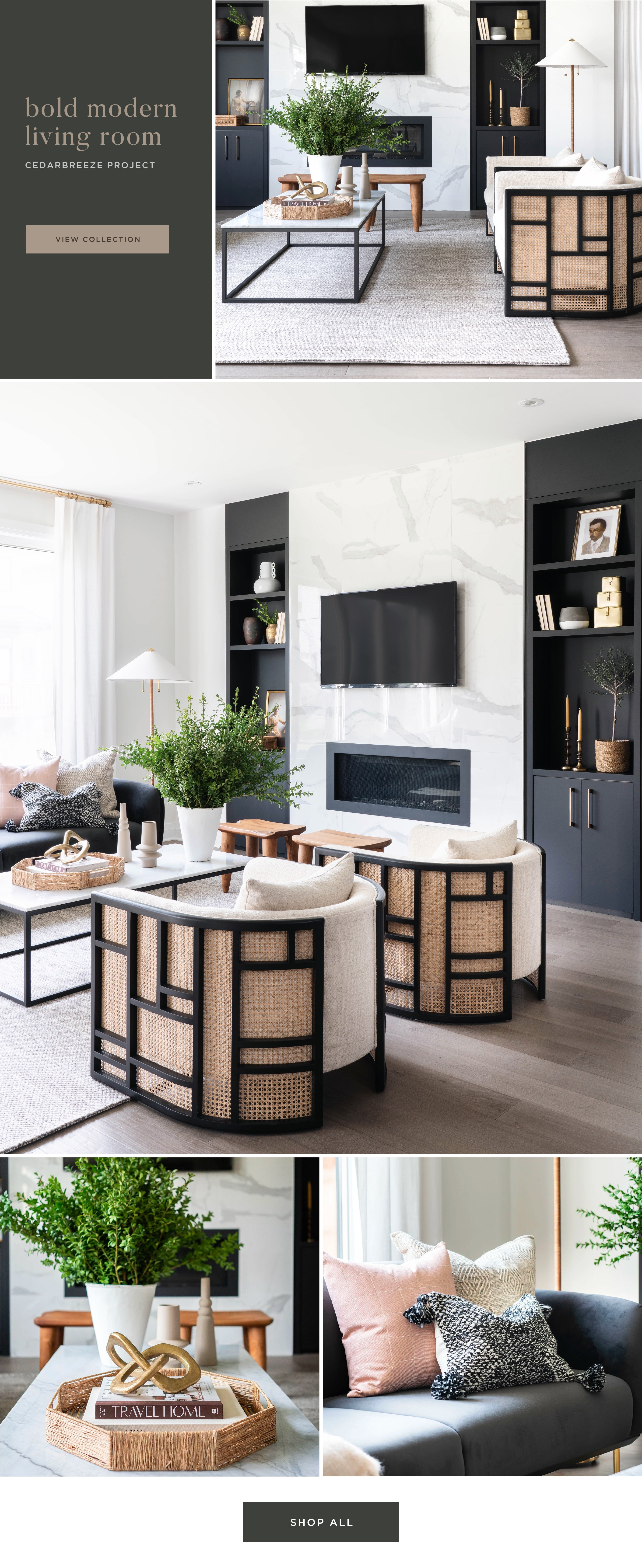 Shop the Look - Bold Modern Living Room