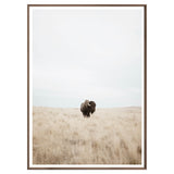 Great Plains Framed Print