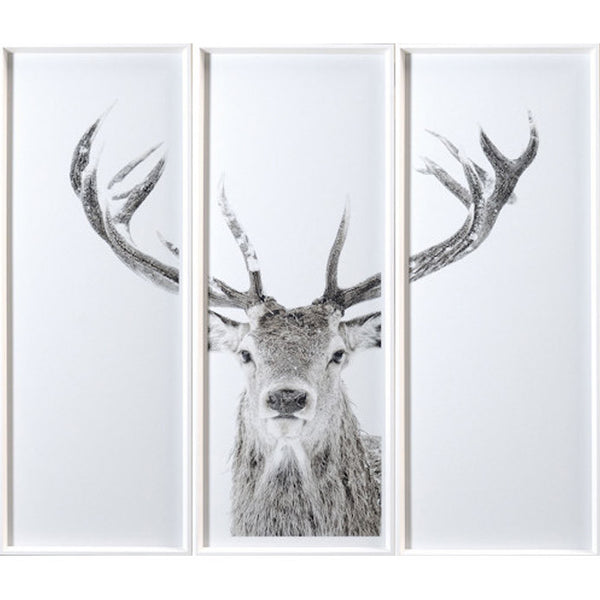 Forest Friendly Set of 3 Framed Prints