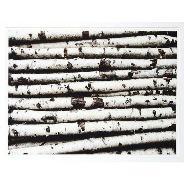 Birch Bed Framed Print